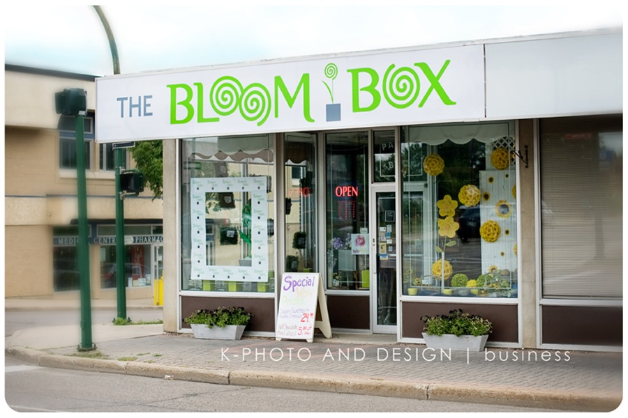 BloomBox