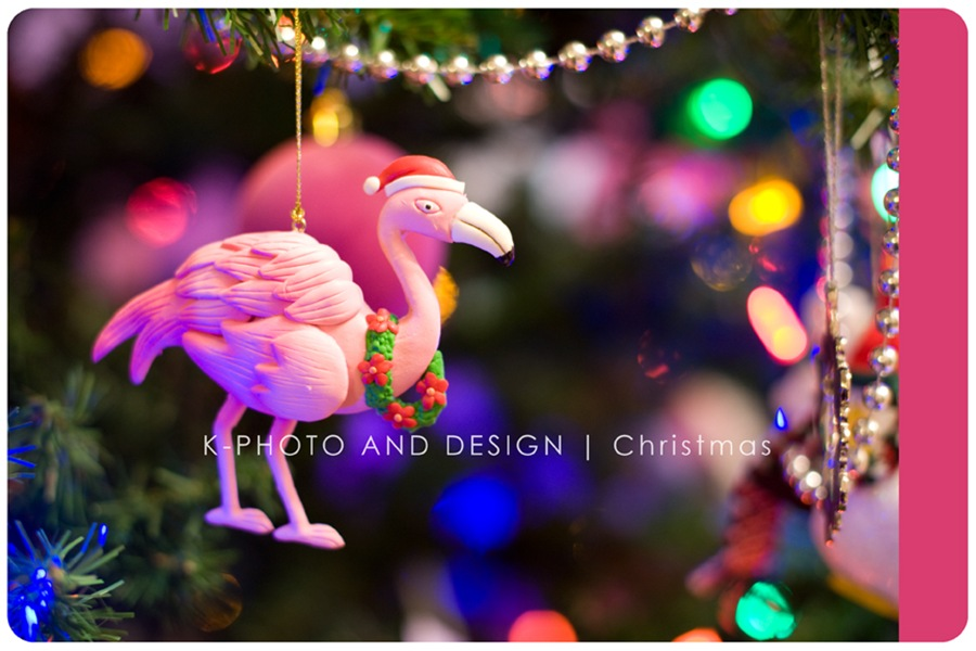 Flamingo Christmas